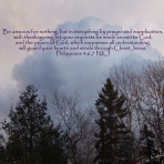 Scripture-Photography Art