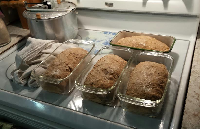 Oatmeal Bread 1